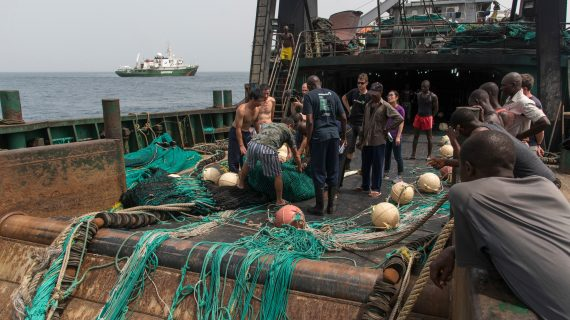 Four illegal fishing cases found in Sierra Leone in four days